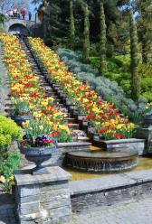 L'escalier de l'Ile Mainau